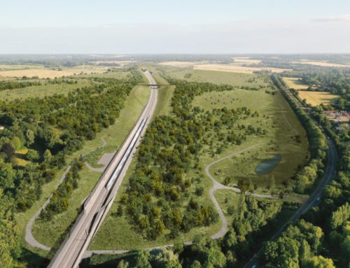 Green light for HS2's ambitious Chiltern tunnel chalk grassland project