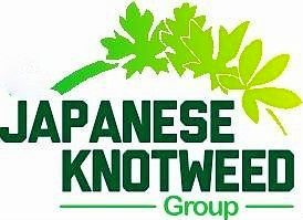 Japanese Knotweed Logo