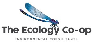 The ecology co-op logo